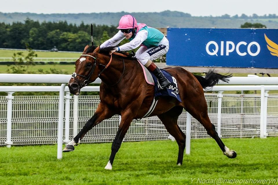 The Undefeated Frankel
