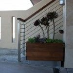 Simple and elegant planter and plantings