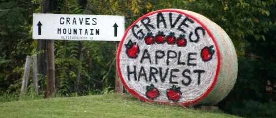 Graves Apple Harvest.  Twice a year festival-craft faire, apple festival, free admission....