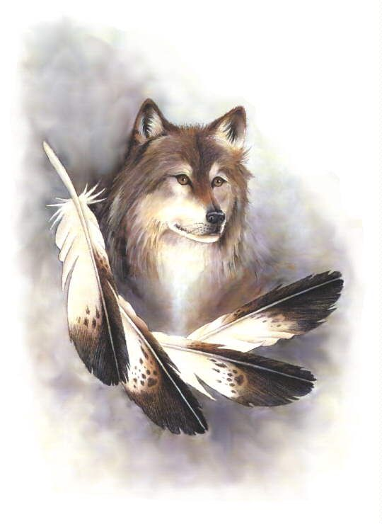 Native American Wolf Spirit Guide | The word Spirit makes ...