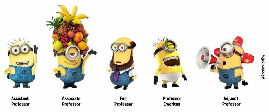 Academia Explained....totally correct for the adjunct position