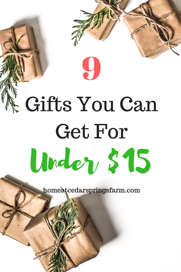 9 Gifts You Can Get For Under 15 Dollars Home At Cedar Springs Farm Christmas Gifts For Kids Expensive Christmas Gift Christmas Gift Card