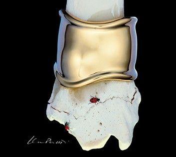 The bone cuff from Tiffany