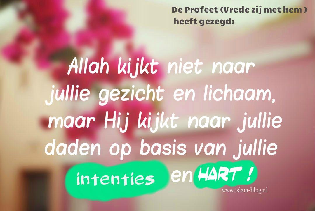 Citaten Politiek Islam : Pin van islam op islamitische quotes nederlands