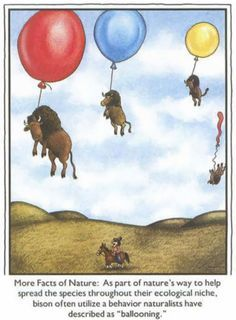 The far side by gary larson rouge et bleu pinterest gary larson the far side by gary larson bookmarktalkfo Choice Image