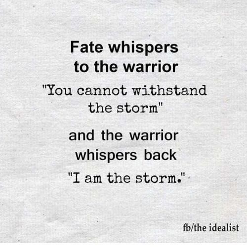Fate Whispers To The Warrior Origin Google Search Inspiration
