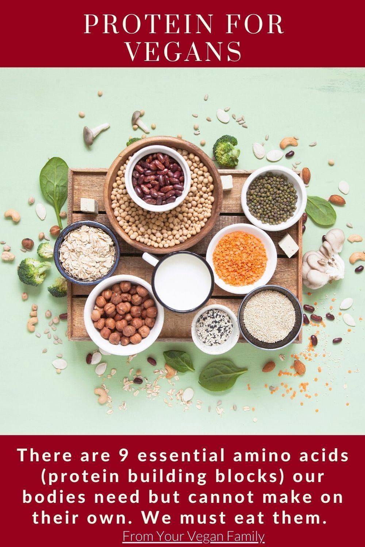 13fe05d595baf0e7e38a57cd8493f035 - How To Get All Your Amino Acids As A Vegan