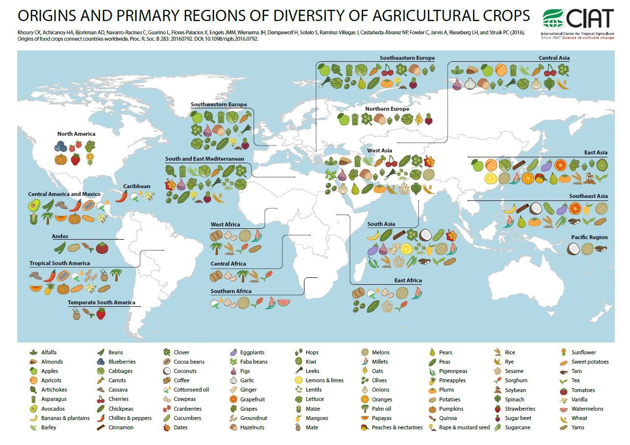 Origin of crops interactive map to see where your food comes from origin of crops interactive map to see where your food comes from ciat blog sciox Choice Image