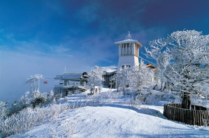 2 Day Yongpyong Ski Resort Tour From Seoul From November Through March Make A Winter Getaway From Seoul To Yongpyong Resort It Comes With All The Bells And Wh