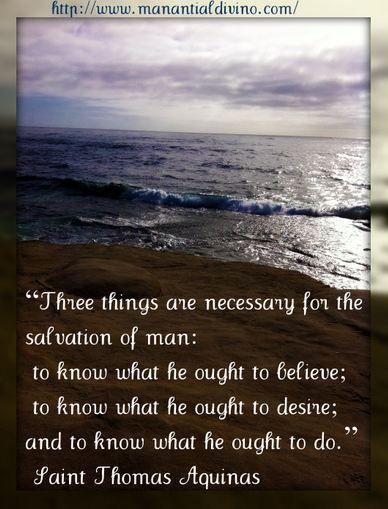 St. Thomas Aquinas Quotes | St. Thomas of Aquinas quotes ...