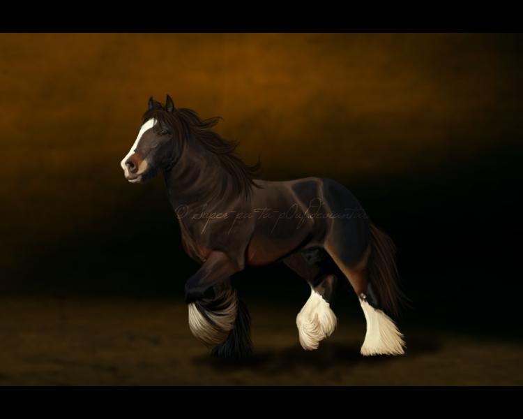 Photo by Porhidur Harpa   Beautiful Horses   Pinterest   Beautiful