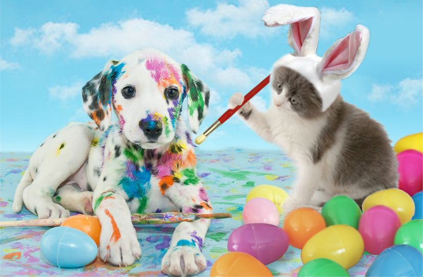 Easter Pet Safety Red Bank Veterinary Hospital Blog Easter Pets Pet Safety Pets