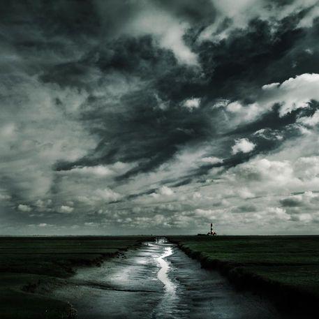 'urwüchsig' von Christine  Ellger
