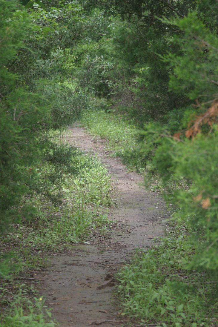 Trail in Okmulgee, Ok