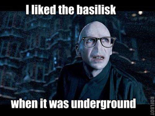 Funny Harry Potter Memes Voldemort : Hipster harry potter ha amused harry potter