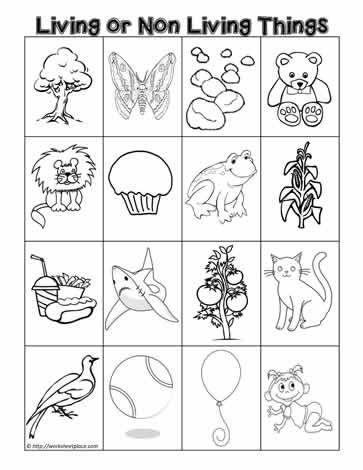 Living or non living sort kids stuff organization for Living and nonliving things coloring pages