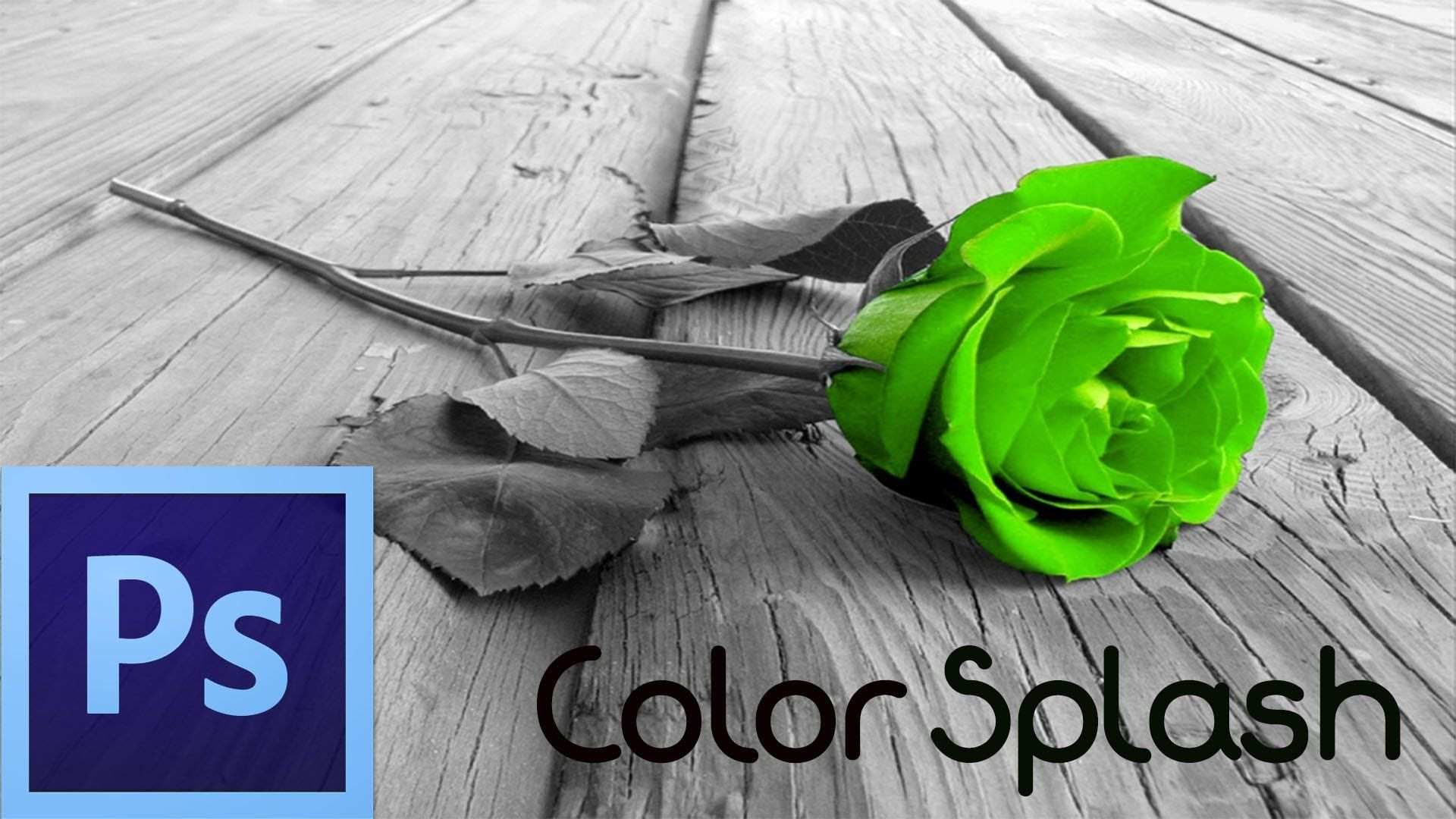 Photoshop cs6 tutorial color splash effect for beginners photoshop cs6 tutorial color splash effect for beginners baditri Choice Image