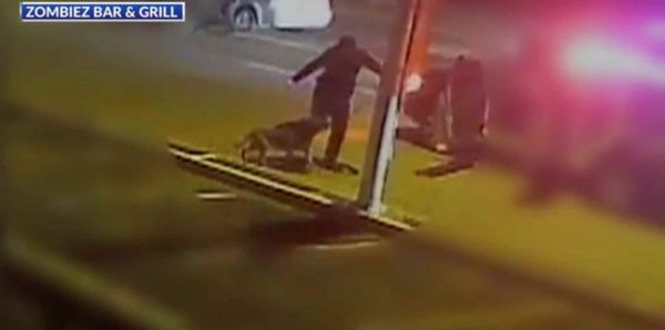 Petition Watch This Cop Kick His Own Dog Unfortunately He S Still On The Force Police Dogs Texas Police Kicks