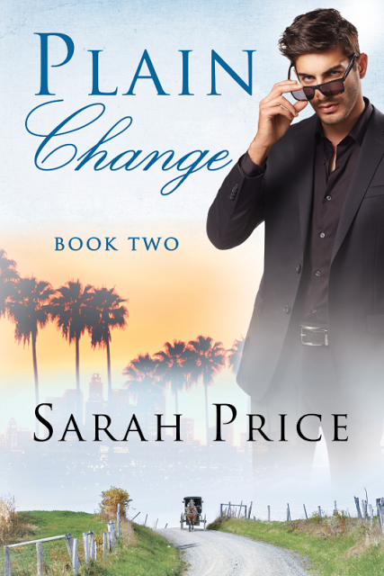 Review Plain Change By Sarah Price Books Amish Books Christian Fiction