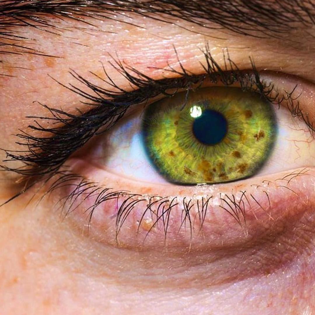 глаза разных цветов и форм фото них