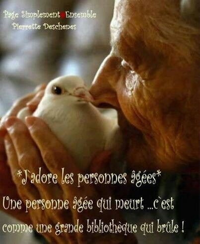 Quote Positive Citations Text French Life Bonheur