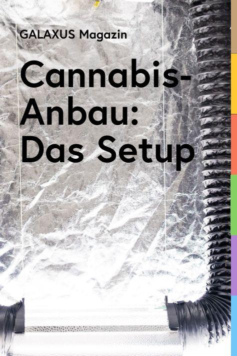 Gute Idee: legale Cannabis-Produkte. Schlechte Idee fürs Portemonnaie: deren Kauf. Daher stellt unser Redaktor Martin die Produkte selbst her. Und du darfst dabei sein. In dieser Folge: Das Grower Setup.
