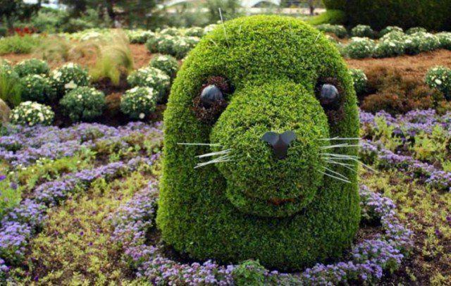 Décoration jardin en 25 idées créatives et faciles à imiter   Gardens