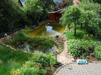 Schwimmteich und Gartenanlage