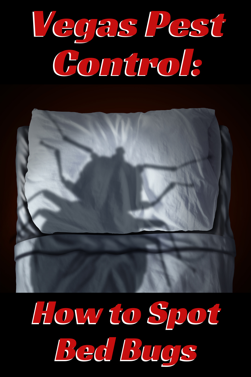 Vegas Pest Control How to Spot Bed Bugs in 2020 Bed