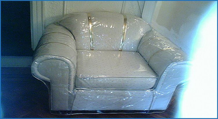 Sensational Elegant Sofa Covers For Bed Bugs Sofa Design Inspiration Dailytribune Chair Design For Home Dailytribuneorg