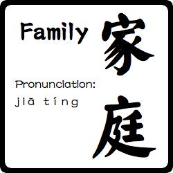 chinese symbol for family symbols pinterest chinese
