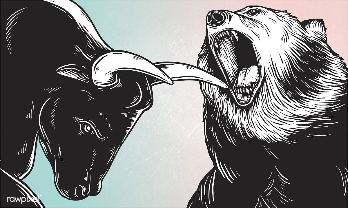 A bull and a bear fighting vector Vector free, Free