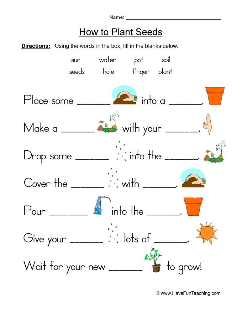 Seeds Plants Fill in the Blanks Worksheet Plant lessons