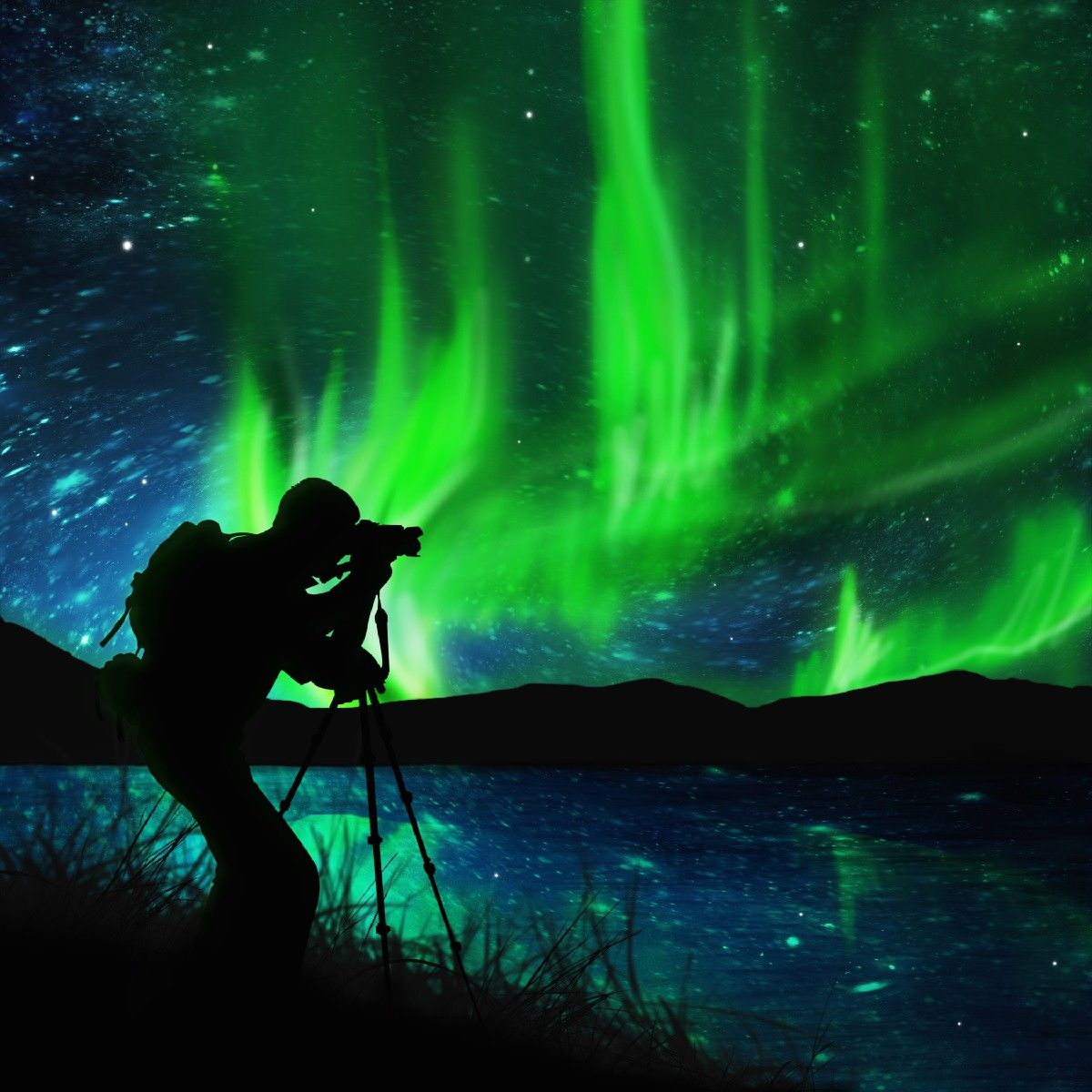 Northern Lights Wall Mural Nature Landscapes The