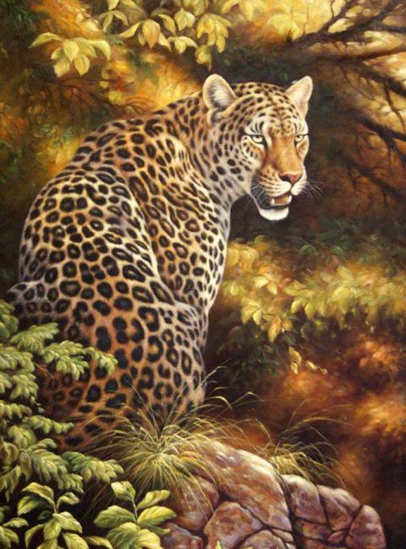 picture.jpg (592×800) | Раскраска по цифрам, Леопард