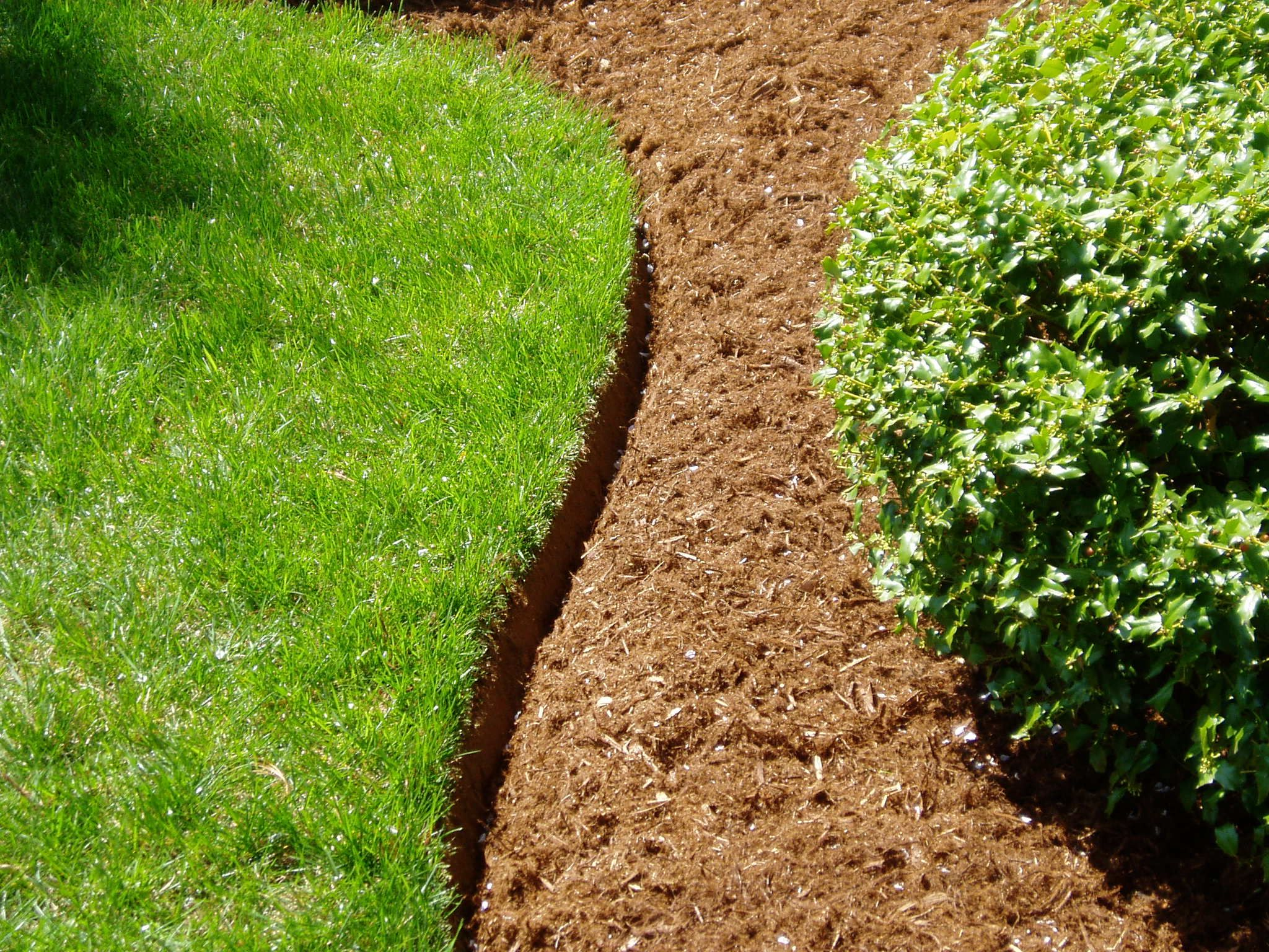 Bed Edging. A cut or hand-dug landscape edge is an easy way to ...