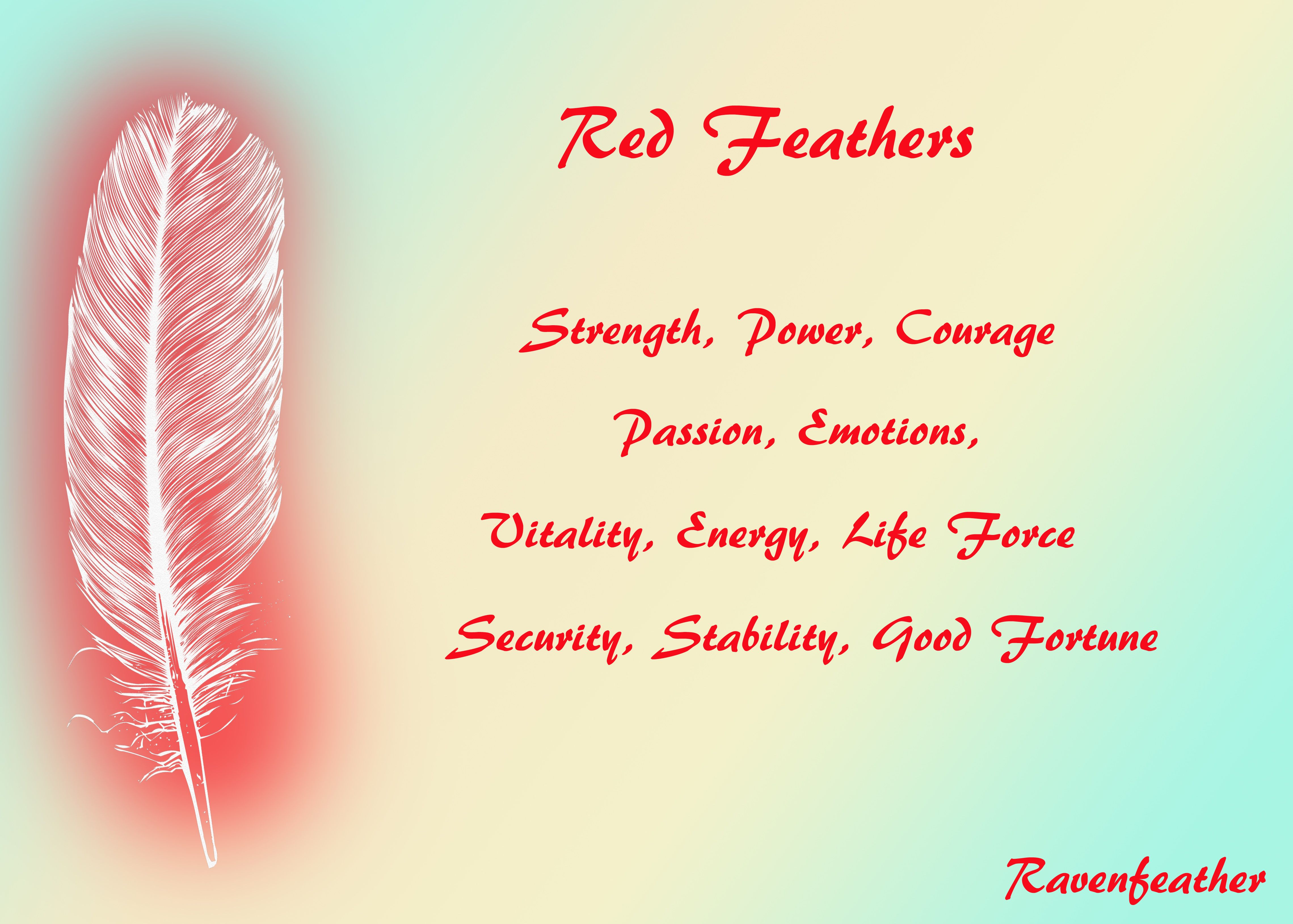 Red Feathers Feather Meaning Feather Tattoo Meaning Red Feather