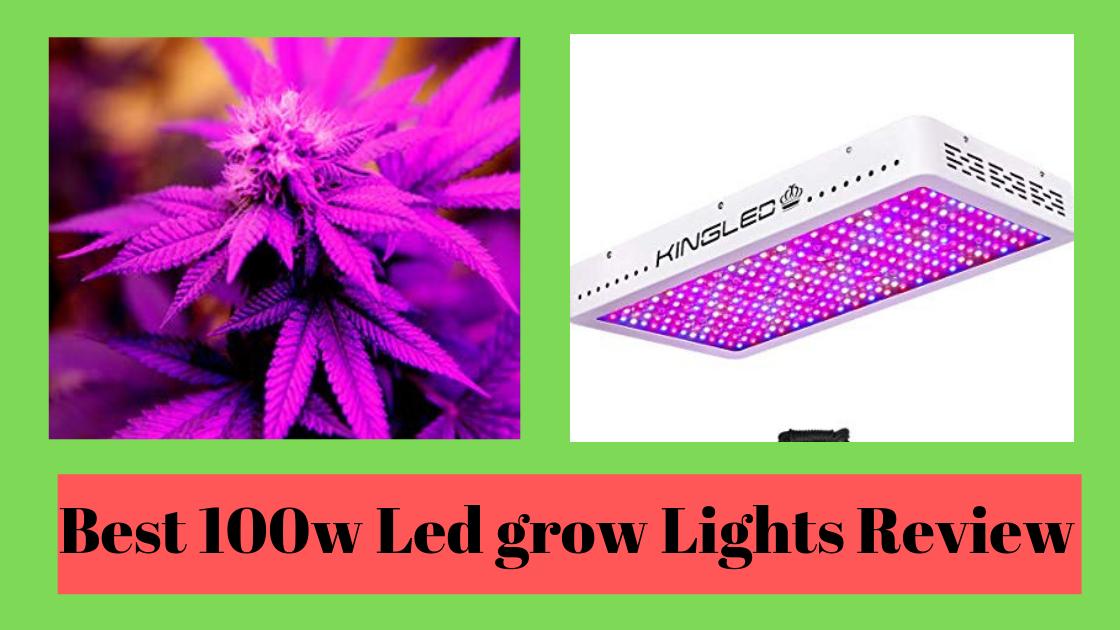 6 Best 1000 Watt Led Grow Lights Review Updated 2019 Complete Guide Led Grow Lights Best Led Grow Lights Grow Lights