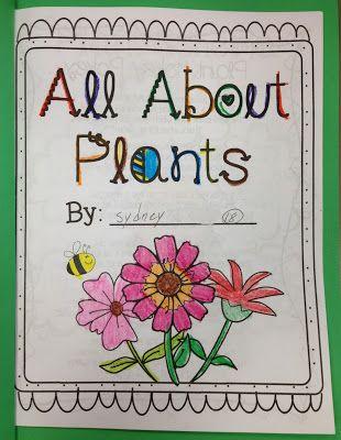 Totally Terrific In Texas Plant Unit Plants Unit All About Plants Plants