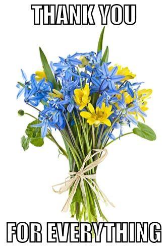Thank you meme | Spring flower bouquet, Spring flowers ...