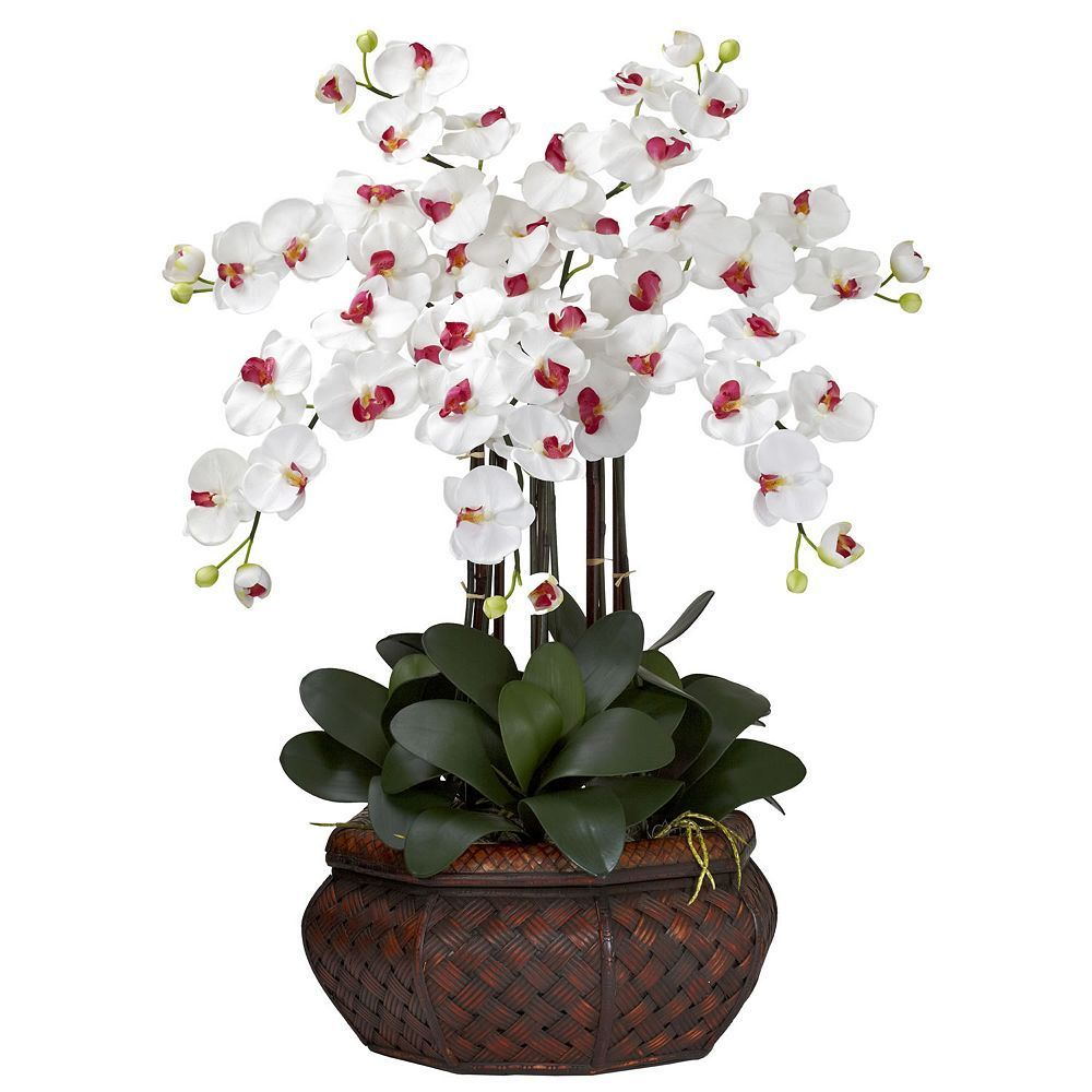 Nearly Natural Silk Phalaenopsis Large Floral Arrangement Products