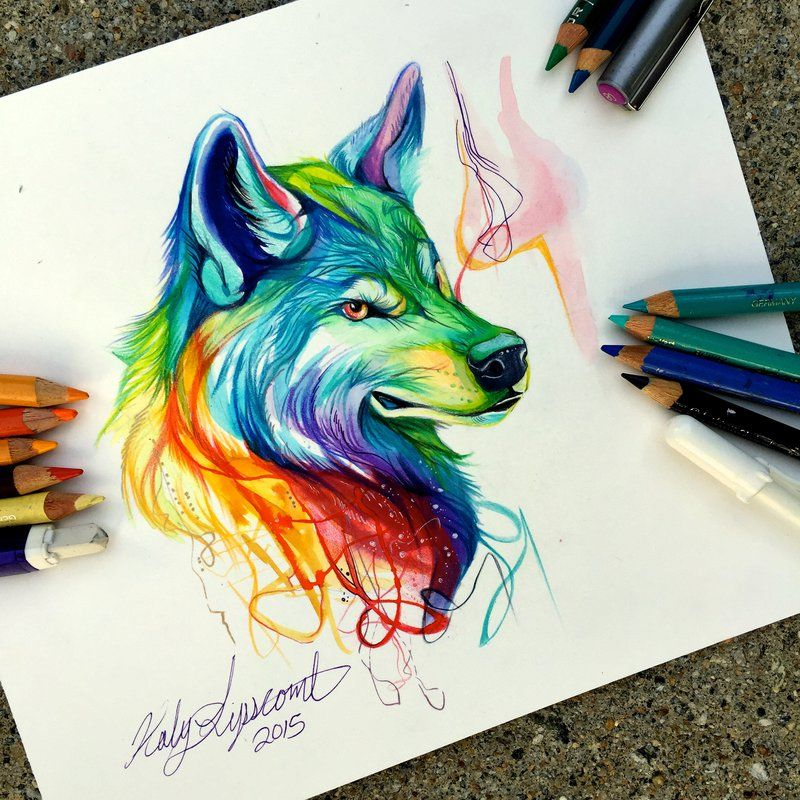 """Colorful Wolf"" colored pencil and mixed media drawing"