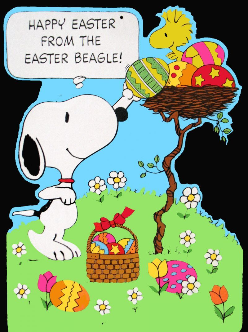 Happy Easter From The Easter Beagle Thats Why We Call The Easter