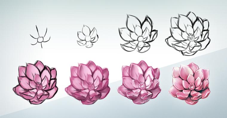 Fiori Facili Da Disegnare.Fiori Facili Da Disegnare Fiore Di Loto Passaggi Per Fare Un