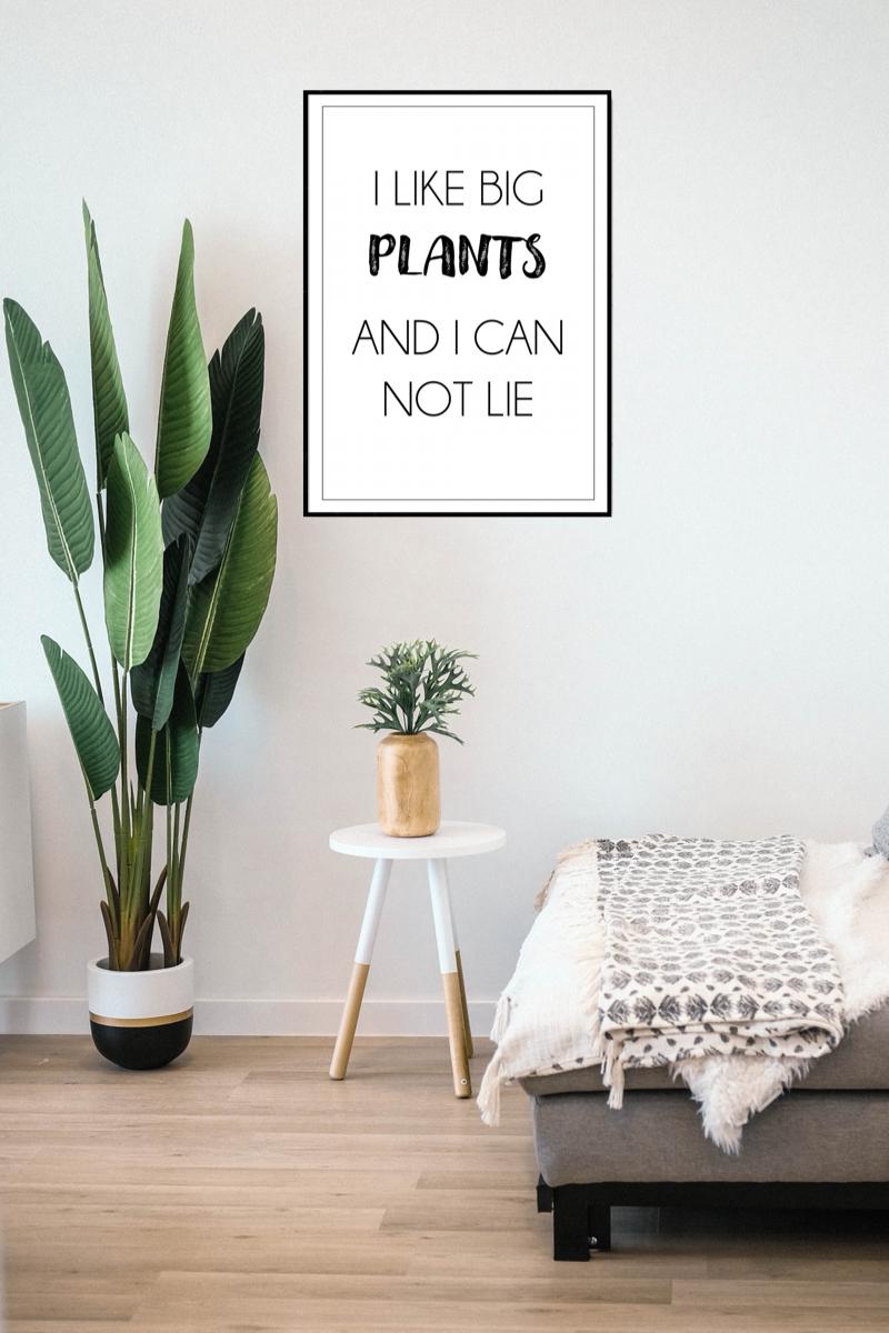 Funny Plant Prints In 2020 Wall Prints Big Plants Plant Print
