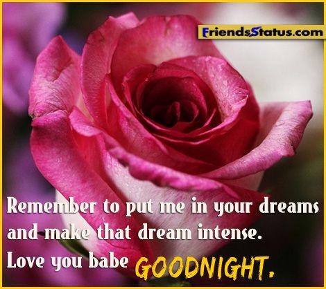 Love You Babe Good Night Pink Rose Flower
