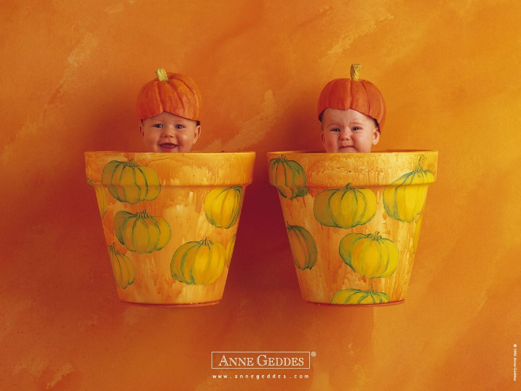 Anne Geddes All Wallpaper | babbies in vasi da fiori - anne geddes File vettoriale
