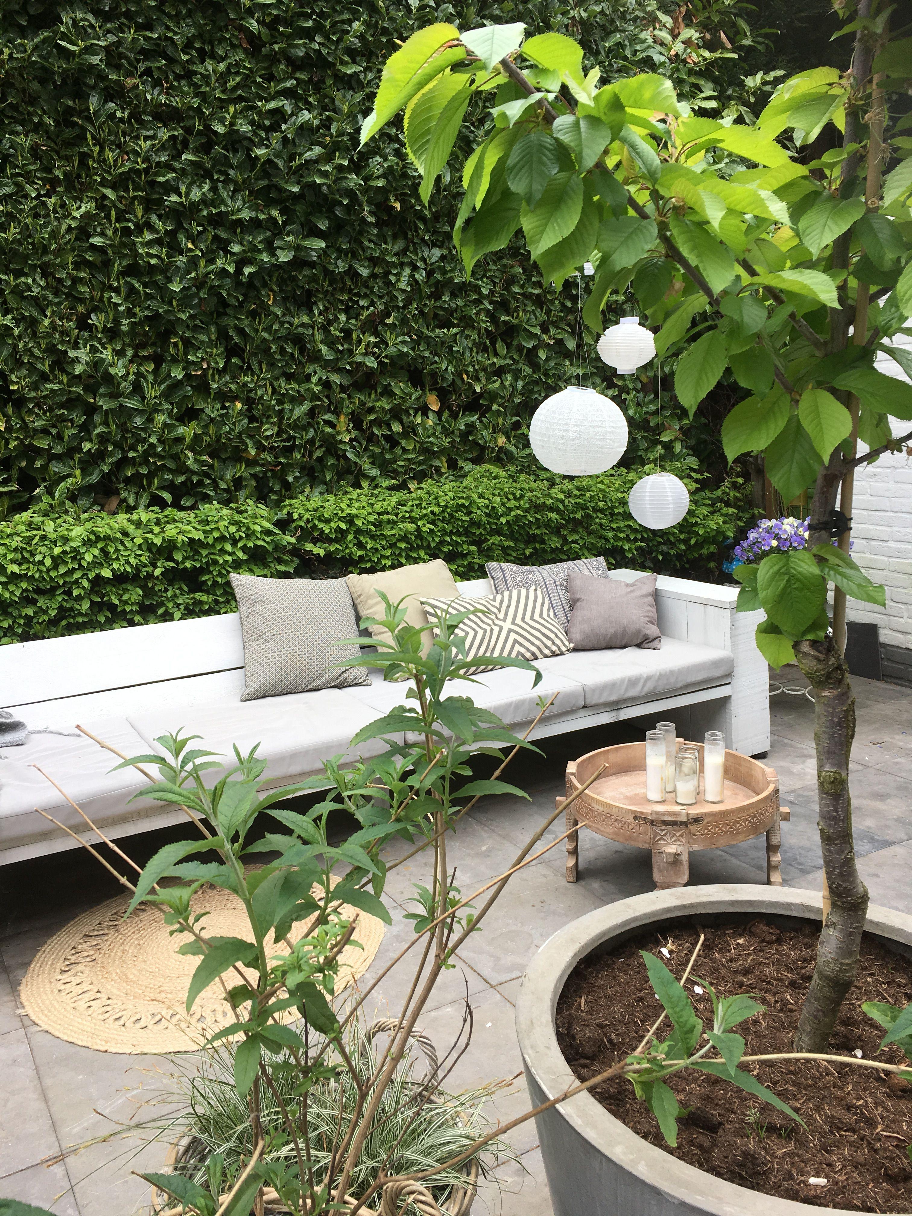 Pin Tillagd Av Siv Andersson Pa Altan Pinterest Garden Outdoor