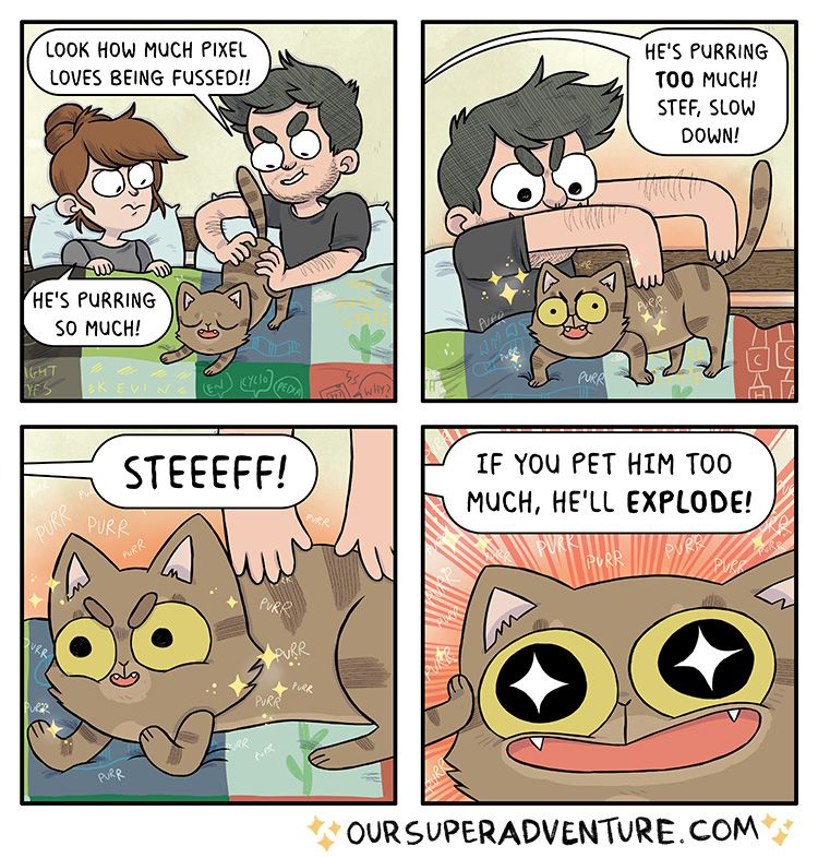 Sometimes My Cats Purr So Loud I M Worried They Ll Explode Is This A Universal Concern They Honestly Sound Like Relationship Comics Comics Super Adventure