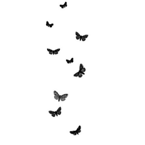 Wallpaper Tumblr Nitwit Fundos Branco Imagens Com